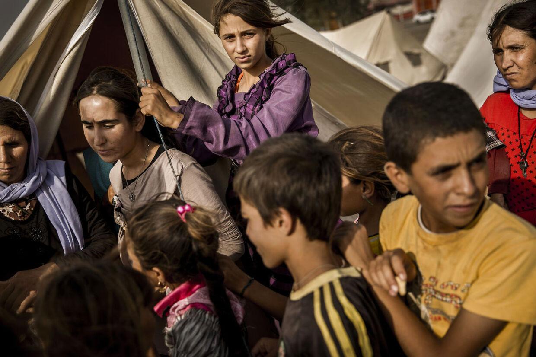 12. Flygtningelejren i Khanke udenfor Dohuk i det nordlige Irak. Lejren blev åbnet, da internt fordrevne yezidier begyndte at strømme til området fra Sinjar bjerget.De var først flygtet til Sinjar bjerget, efter at Islamisk Stat tog kontrollen med de områder, hvor de boede, og mange af dem opholdt sig i mange dage på bjerget stort set uden adgang til mad og drikkevand.