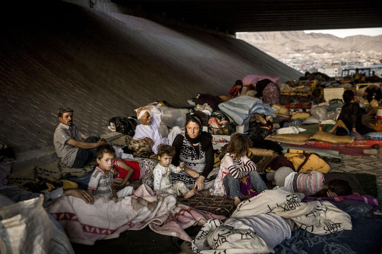 Internt fordrevne yezidier bor rundt omkring i Dohuk under motorvejsbroer og i ufærdige byggerier.De var flygtet til Sinjar bjerget, efter at IS tog kontrollen med de områder, hvor de boede, og mange af dem opholdt sig i mange dage på bjerget stort set uden adgang til mad og drikkevand.