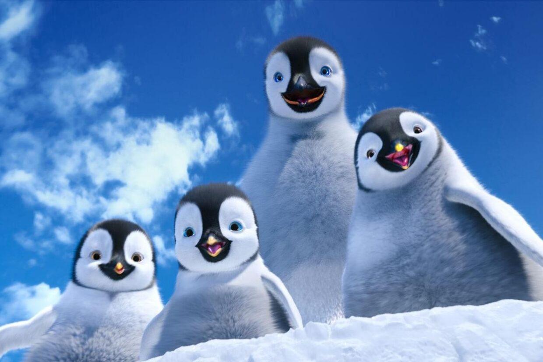 Farverne og 3D-effekterne er flotte i 'Happy Feet 2'. Men charmen og historien mangler.