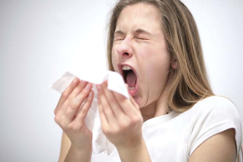 Nys løs. Allergi og astma er ikke nødvendigvis kun dårligt for helbredet. Det kan beskytte mod kræft.