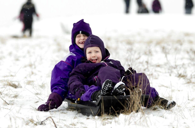 Børnene i det jyske og på Bornholm kan godt begynde at glæde sig: I næste uge kommer vinteren og hvem ved: Måske bliver det vejr til en rask kælketur!? (Arkivfoto)
