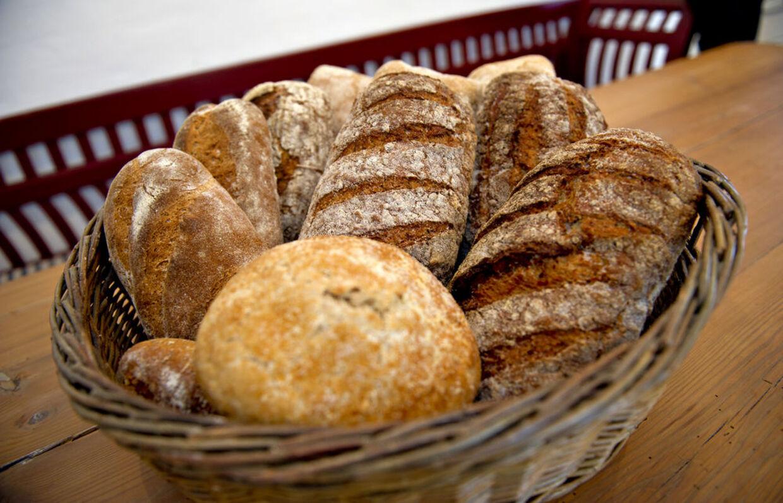 Der er gluten i både rug, byg, hvede og havre og dermed også i langt det meste brød. Men der er ingen grund til at lade være med at spise brød, fastslår flere eksperter.
