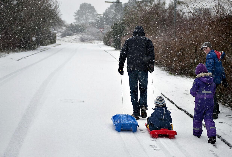 Du kan roligt finde kælken frem, for sneen bliver liggende. Måske en uge endnu!