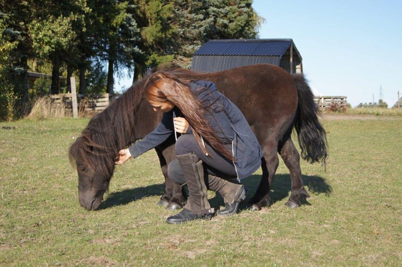 17-årig piges juletragedie: Fyrværkeri skræmte Eas hest