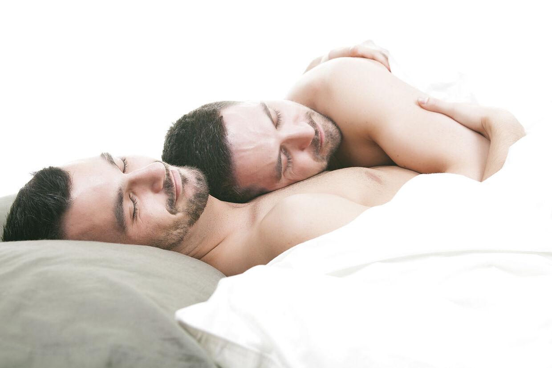 mandlige homoseksuelle køn