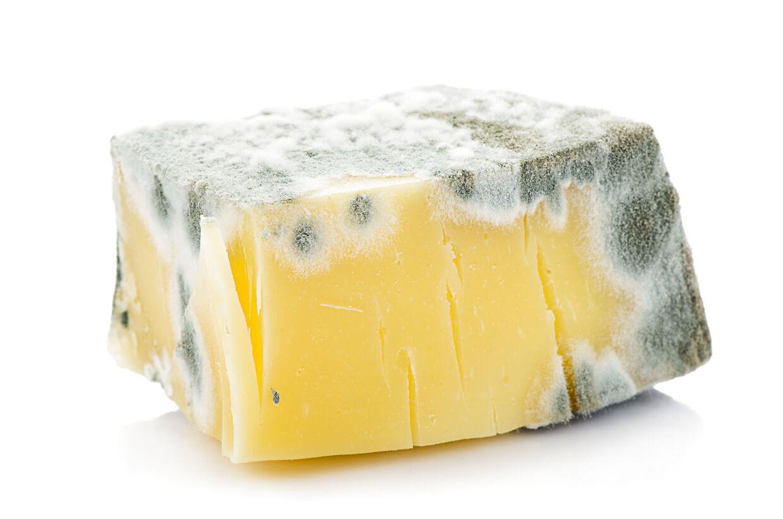 Fødevarestyrelsen advarer mod at købe muggen ost.
