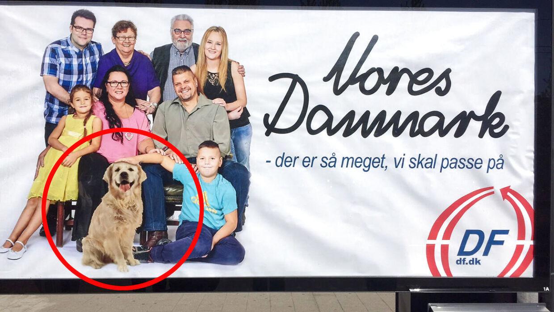 I Dansk Folkepartis nye kampagne har partiet desuden klippet en hund ind på billedet af en familie. Amatøragtigt, kalder BTs billedredaktør det. Foto: Privatfoto: Sabrine Haenschke Dam.