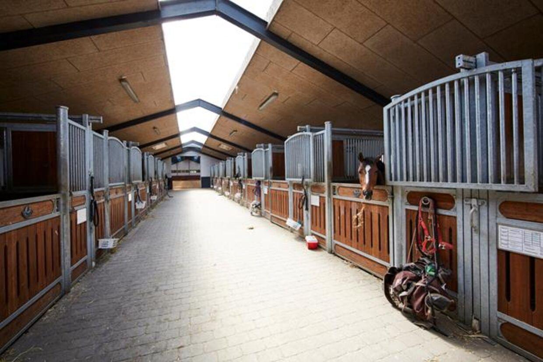 Er man til heste, er der god mulighed for at udleve sin interesse på Rosenkilde Gods, der har et ridecenter med 115 hestebokse.