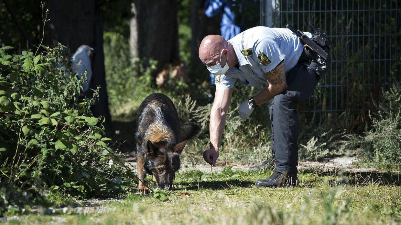 Den 38-årige kvinde blev tirsdag 16. august 2016 overfaldet på Østerbro i København. Kvinden blev fundet ved Sporsløjfen, der ligger ved banelegemet ved Nordhavn og sportsklubben B93's udendørs træningsanlæg omkring kl. 15, tirsdag eftermiddag. Politifolk med hunde gennemsøgte efterfølgende området minutiøst i jagten på spor af gerningsmanden.