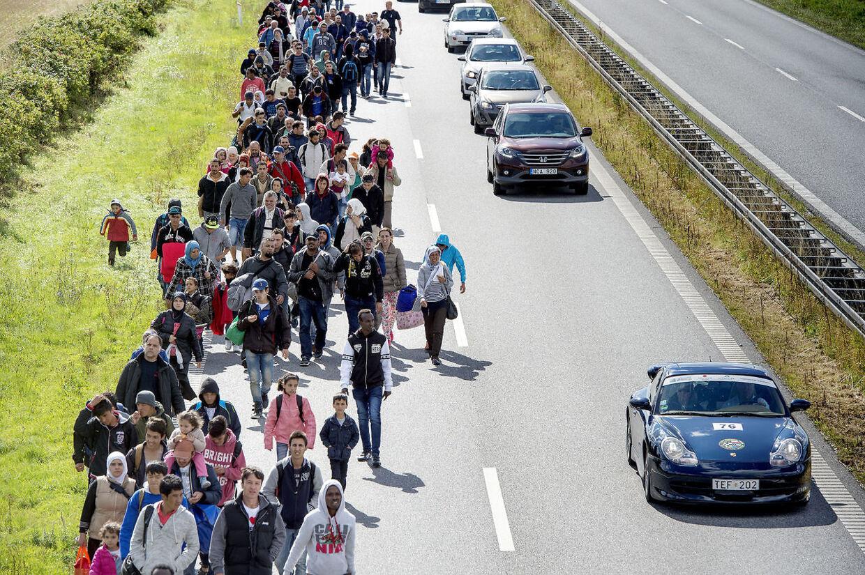 ARKIVFOTO. Mandag den 7. september indvaderede knap 200 flygtninge Sydmotorvejen ved Rødby og begyndte den lange vandring mod Sverige.