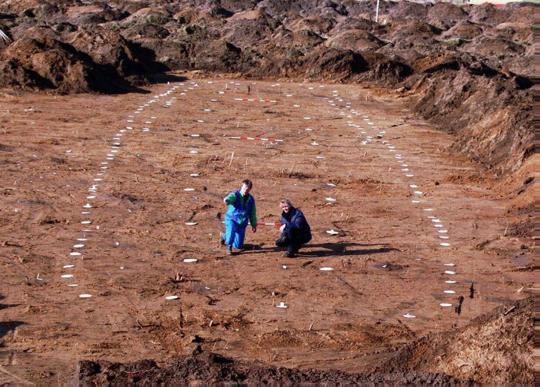 En helt speciel boplads fra vikingetiden har set dagens lys ikke langt fra Danmarks femte vikingeborg, Borgring. Fundet fik det til at gibbe i arkæologerne. På billedet ses et langhus fra Vikingetiden ved motorvejsbyggeriet mellem Syvsten og Frederikshavn. Her fandt arkæologer fra Vendsyssel Hist. Museum i Hjørring nemlig et kæmpehus fra vikingetidens begyndelse. Fundet er fra 1995.Huset er 8 m bredt og 44 m langt. Huset ligger på et størrebopladsområde fra yngre germansk jernalder/vikingetid. Her ses arkæolog Torben Nilsson (bagest) og arkaeologstud. Lone Andersen ved huset.