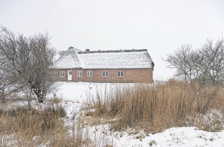 To hollandske kvinder har betalt 22 millioner kroner for Sødamgård, hvor de vil dyrke kartofler og løg.