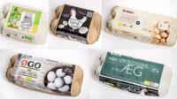 Test: Er der forskel på (øko)æg?