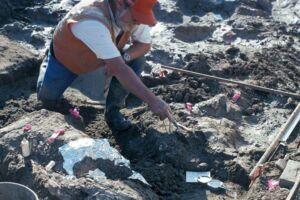 Knoglefundet blev gjort helt tilbage i 1992 i forbindelse med udgravninger til en ny motorvej ved San Diego i Californien.