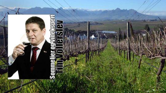 Stellenbosch er en af Sydafrikas mest kendte vinområder.