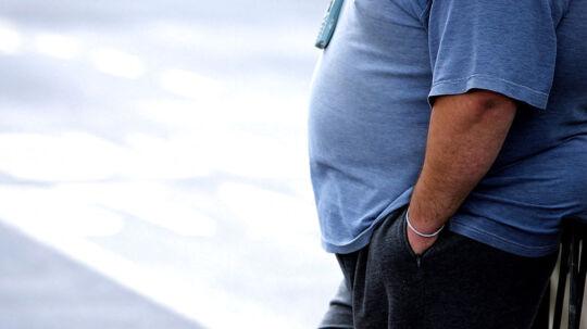 En dansk sag om en fyring af en 160 kg tung mand er gået helt til tops i EU-systemet.