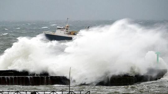 Stormvejr i Danmark. (Foto: Henning Bagger/Scanpix 2011)