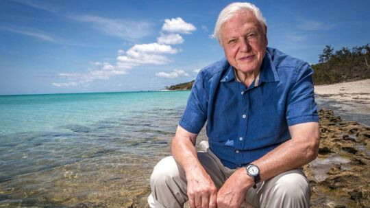 Søndag 8. maj: Engelsk tv-producer David Attenborough, 90 år. - - - - epa05247310 An undated handout picture made available by the Australian Broadcasting Corporation (ABC) on 07 April 2016 shows nature documentary maker Sir David Attenborough on the Great Barrier Reef, Queensland, Australia, during works for his upcoming three-part series on the famous coral reef on ABC TV. Attenborough blamed 'the twin perils brought by climate change, an increase in the temperature of the ocean and in its acidity' for threatening the reef's existence. EPA/AUSTRALIAN BROADCASTING CORPORATION/ABC/HANDOUT AUSTRALIA AND NEW ZEALAND OUT HANDOUT EDITORIAL USE ONLY/NO SALES