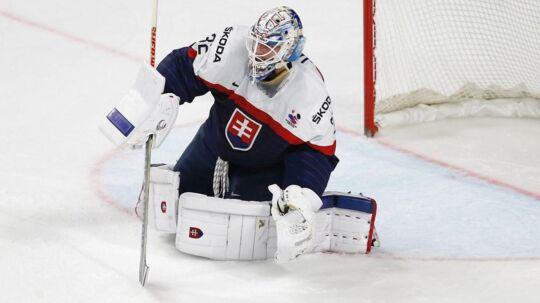 De slovakiske spillere brugte en olie, der ødelagde isen ved VM: Her er det målmand Jaroslav Janus.