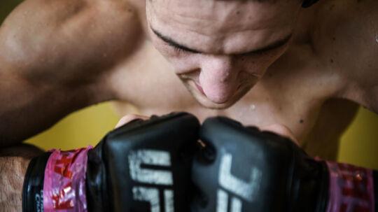 Til træning med bosnisk-fødte Damir Hadzovic, der er UFC-fighter. Han forbereder sig lige nu til sin første store kamp, der finder sted i Globen i Stockholm den 28. maj 2017.. (Foto: Ida Marie Odgaard/Scanpix 2017)