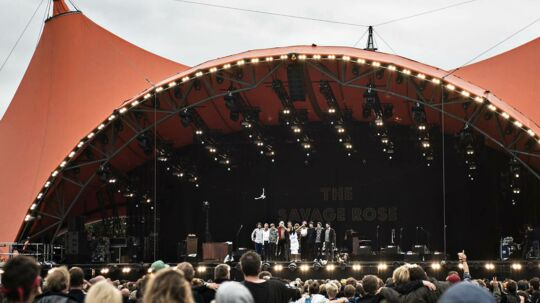 The Savage Rose spiller på Roskilde Festival 2017, torsdag den 29. juni 2017. Her slipper hun en due fri med et ønske om fred i verden.