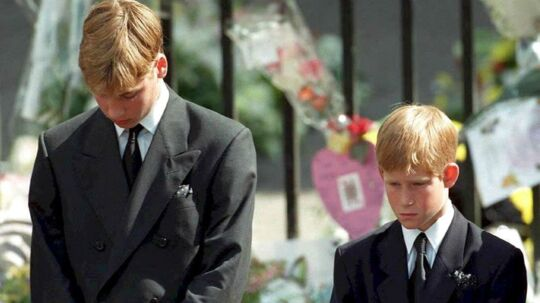 Prins William og prins Harry ses her i begravelsesoptoget for deres mor.