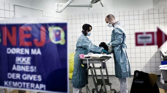 En hund modtager kemo-behandling på dyrehospitalet LIFE.