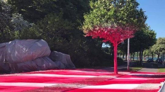 Aros' kontroversielle kunstværk, hvor en kunstner malede dele af Mindeparken lyserødt med akrylmaling.