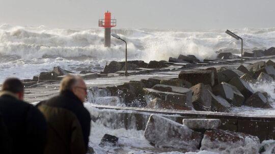 Stormen Egon var hård ved Thomasminde i efteråret 2005.