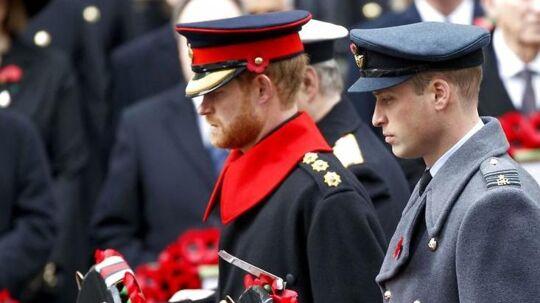 Hej ses de britiske prinsebrødre til Remembrance Day, der mindes de Commonwealth-soldater, der døde i første verdenskrig.