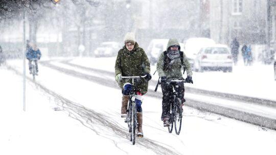 Ifølge DMI kan vi meget vel få den koldeste vinter i fem år.
