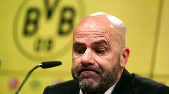 Peter Bosz er nu fortid i den tyske klub Dortmund.