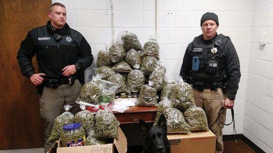 Betjentene Robert Penner og Korey Goplin med den store mængde marihuana.
