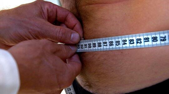 I studiet blev blodprøver fra 494 overvægtige forsøgspersoner undersøgt før og efter vægttab. Formålet var at lære mere om de biologiske mekanismer, der påvirker, hvorvidt folk har succes med at styre deres vægt.