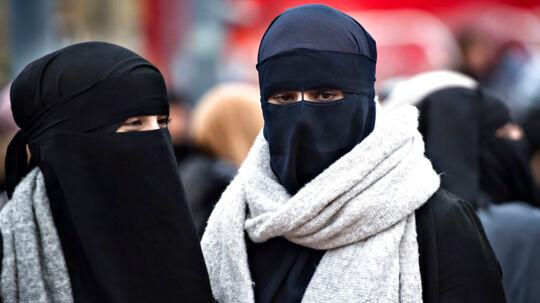 Udlændinge- og integrationsudvalget i Folketinget kræver, at »Kvinder i Niqab« tager deres niqab af, når de mødes med udvalget.