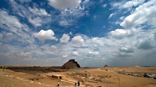 Dybt under Saharas ørkensand gjorde palæontologerne deres gigantiske fund.