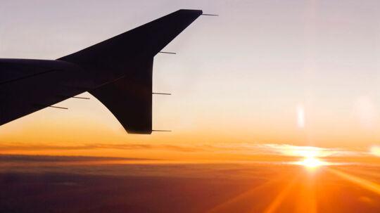 Hos en række selskaber har man under faglige rejser blandt andet betalt for flybilletter på businessclass, overnatning på femstjernede hoteller, dyre middage, sightseeing og byture.