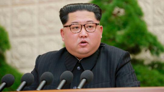 Nordkoreas leder, Kim Jong-un, udtalte sidste år, at Nordkorea officielt var en atommagt. Scanpix/Korean Central News Agency/korea News Service Via Ap