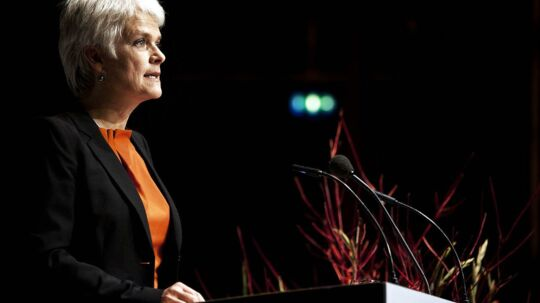 SFs nye formand Annette Vilhelmsen får nok at se til i dette efterår.
