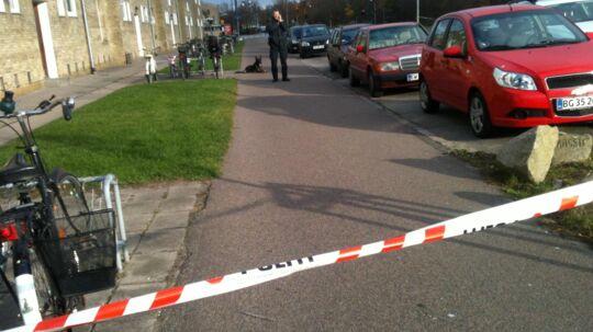 Politiet leder den 11. november 2011 med hunde efter sport ved Ruten i Tingbjerg.