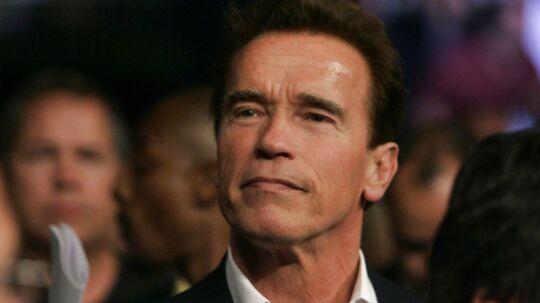 Arnold Schwarzenegger ved en boksekamp i Las Vegas, April 2008.