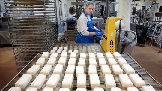 Høje lønninger til lavt uddannet arbejdskraft er en af årsagerne til, at blandt andet dansk fødevareindustri mister konkurrencekraft over for udlandet. Billedet er fra Arla. Arkivfoto: Jørgen Kirk