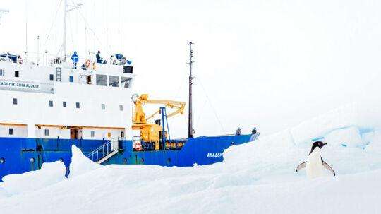 Her ses et billede fra 28. december 2013 af det 'strandede' skib MV Akademik Shokalskiy, som sidder fast i isen i Antarktis. Skibets besætning - forskere og turister - venter nu på, at en kinesisk isbryder skulle komme dem til undsætning, men det er indtil videre mislykkedes for det kinesiske skib. hvorfor de australske myndigheder nu må se sig om efter en anden løsning.