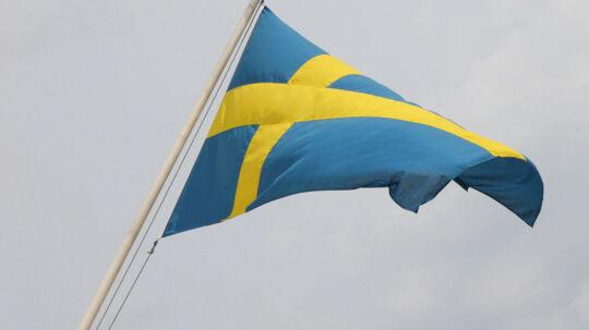 Det er en illusion at kalde svensk for et »nabosprog«, og svenske unge har mere end svært ved at forstå dansk. To forskere forsøger at vække os af den lyserøde drøm om det skandinaviske sprogfællesskab.
