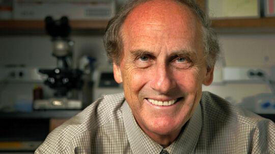 En af de tre forskere, der mandag fik tildelt Nobelprisen i medicin, døde for få dage siden, oplyser Nobelkomitéen. Göran Hansson, der er Nobelkomitéens sekretær, siger til det svenske nyhedsbureau TT, at canadieren Ralph Steinman døde i sidste uge.