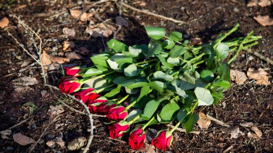 Mor og datter fundet døde bag i familiens varevogn i Rø Plantage uden for Klemensker på Bornholm. Ti røde roser blev mandag lagt dér, hvor varevognen med de to døde blev fundet af kvindens kæreste søndag.