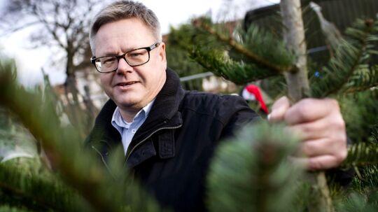 Hans Nielsen og familien har ofte fældet juletræet selv i skoven. I år blev det købt på Amager til den nette sum af 5.000 kr.