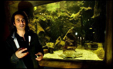 PLEJEBARN: Erann DDs skildspadde, Dykker-Kaj, er i pleje i Danmarks Akvarium. I går var han ude at besøge den og skrev samtidig autografer til akvariets gæster. Foto: Thomas Nielsen