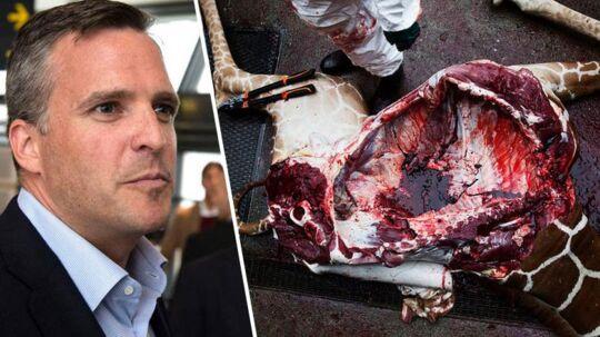 Den amerikanske ambassadør, Rufus Gifford, er »oprørt« over aflivningen af giraffen Marius.
