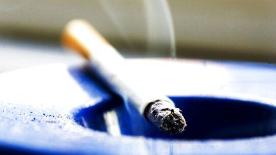 Ny forskning viser, at 14 procent af cigaretrøgs giftige og kræftfremkaldende stoffer ender hos overboen.